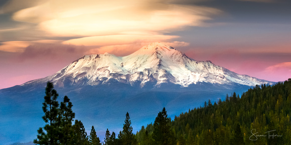 Mount Shasta Dream
