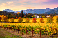 Napa Valley Autumn Sunset